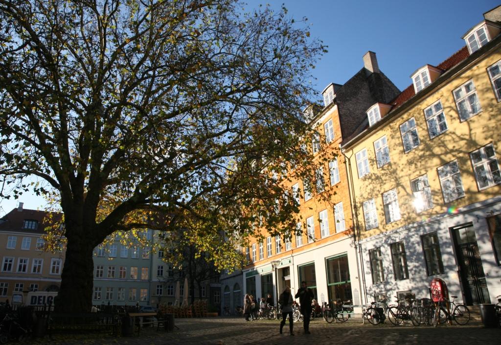 A soothing space - Gråbrødretorv Square - Copenhagen.